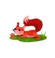 adorable red squirrel found acorn in grass forest vector image