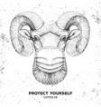 animal ram or mouflon wearing face medical mask