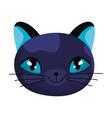 black cat face cartoon character pets vector image vector image