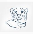 cheetah animal wild one line design vector image