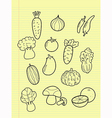 Freehand drawing vegetables vector image vector image