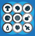 fruit icons set with beet tropical fruit vector image vector image