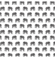 pattern elephant animal tender isolated icon vector image vector image