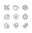 set line icons fruit vector image