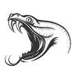 Snake Head vector image vector image