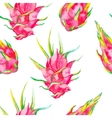 Tropical seamless pattern Exotic leaves and fruit vector image
