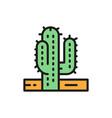cactus desert tree flat color line icon vector image