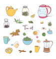 collection of tools for tea preparation vector image