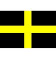 Flag of Saint David vector image vector image