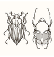 Hand drawn engraving Sketch of Scarab Beetle and vector image vector image