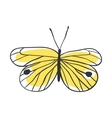 Isolated butterfly Hand drawn vector image vector image