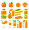 orange fuit and fresh juice flat elements vector image