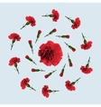 Red carnation flower vector image