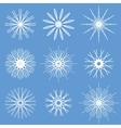 Snowflakes Ornament Set vector image vector image