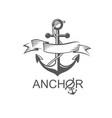 anchor symbol with ribbon vector image vector image