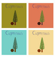 assembly flat nature plant cupressus vector image