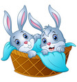 baby bunny in a basket with a towel vector image vector image