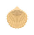 beautiful shell icon flat style vector image vector image
