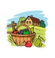 farm fruit basket on grass vector image