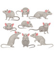 flat set of mouse in different poses small vector image vector image