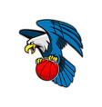 Flying Bald Eagle Grab Basketball vector image vector image