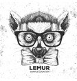 hipster animal lemur hand drawing muzzle