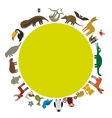 Round frame Sloth anteater toucan lama bat seal vector image