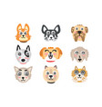 set funny cartoon dogs heads dogs different vector image vector image