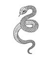 tattoo snake traditional black dot style ink vector image vector image