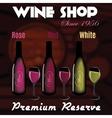 various types wine in wine cellar vector image