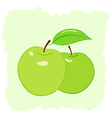 two green apples vector image