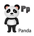 Alphabet P with panda vector image
