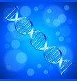 human dna background vector image vector image