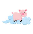 pig with clouds vector image