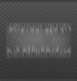 polyethylene plastic wrap template realistic vector image vector image