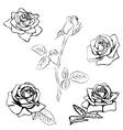 Set Rose sketch vector image