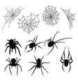 set silhouettes spiders and cobwebs vector image vector image