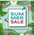 summer discounts banner template exotic vector image