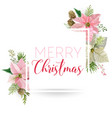 winter christmas flowers greeting card vector image vector image