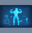back muscle vector image