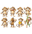 brown monkeys in different actions vector image vector image