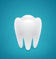 Healthy human tooth vector image vector image