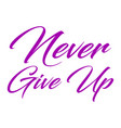 inspirational quote never give up hand written vector image vector image