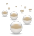 Set of Pearls vector image vector image