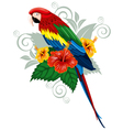 Bright parrot vector image
