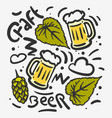 craft beer hand drawn design with mugs of vector image vector image