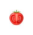 fresh juicy vegetable - tomato icon vector image