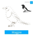 Magpie bird learn to draw vector image vector image