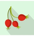 Briar fruits icon flat style vector image