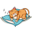A cat taking a nap vector image vector image